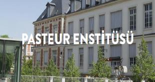 Pasteur Enstitüsü