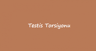 Testis Torsiyonu