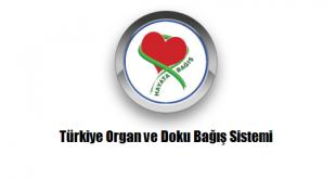 Türkiye Organ ve Doku Bağış Sistemi