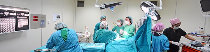 Hacettepe Üniversitesi Diş Hekimliği Fakültesi Ameliyathane