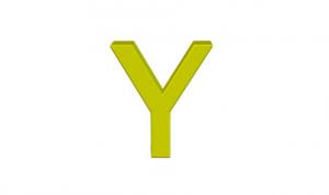 Y ile başlayan Tıp Terimleri