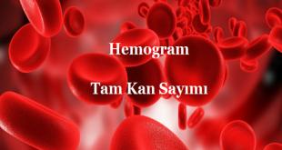 Hemogram