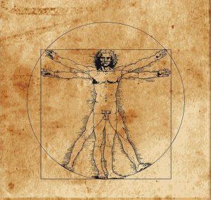 Leonardo-da-Vinci-Anatomi-Cizimi