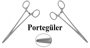 Portegüler