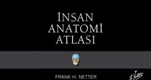 İnsan Anatomisi Atlası Netter