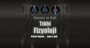 Guyton ve Hall Tıbbi Fizyoloji Ders Kitabı