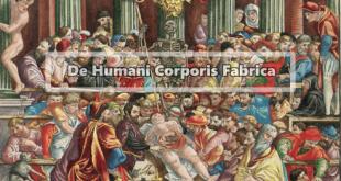 De Humani Corporis Fabrica