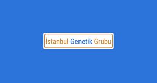 İstanbul Genetik Grubu
